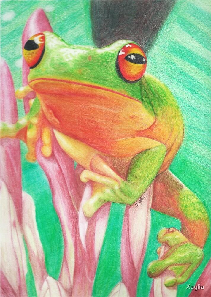 Froggie by Xaylia