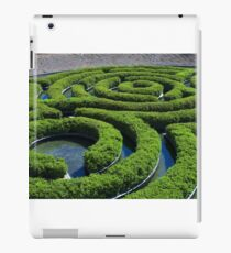Concentric iPad Case/Skin