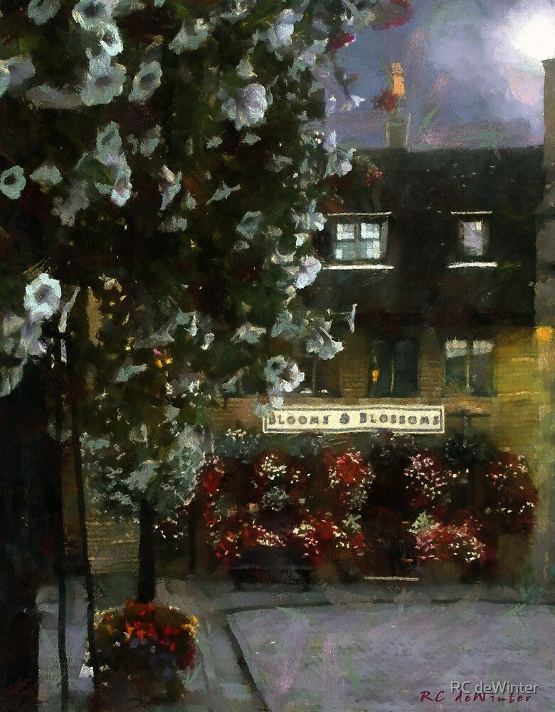 Moonlight on the Square by RC deWinter