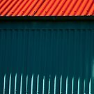 Hot Tin Roof - No Cat! by Smaxi