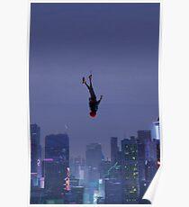 Spinnenmeilen Poster