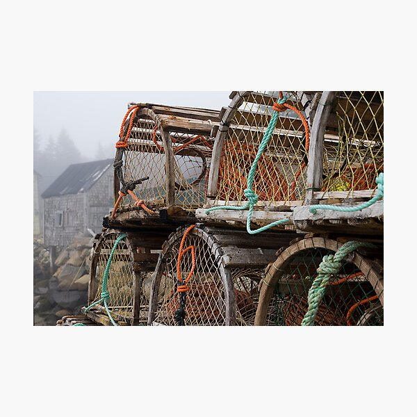Lobster Nets Photographic Print