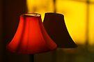 Lamp Light by martinilogic