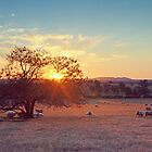 Central West Sunset by Cloudlingpics
