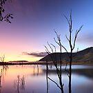 Lake Somerset Dawn by David de Groot