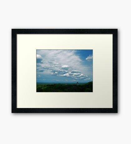 Above the Canopy (original) Framed Print