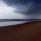 Monsun by STEPHANIE STENGEL | STELONATURE PHOTOGRAPHY
