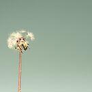Blown Away by Nicole  Hastings