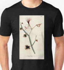 The Botanical magazine, or, Flower garden displayed by William Curtis V3 V4 1790 1791 0137 Pelagonium Tetragonum, Square Stalked Geranium Unisex T-Shirt