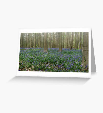 Hallerbos Blues Greeting Card