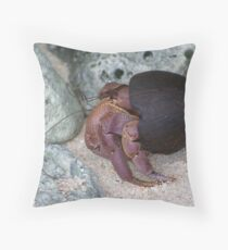 Coconut Home Throw Pillow