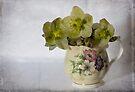 Flowers and jug by inkedsandra