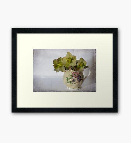 Flowers and jug Framed Print