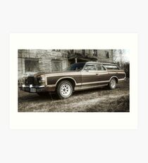 25.4.2010: 1977 Ford Country Squire I Art Print