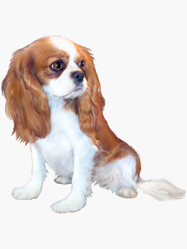 Cavalier King Charles Spaniel - Blenheim Puppy by JeanBFitzgerald
