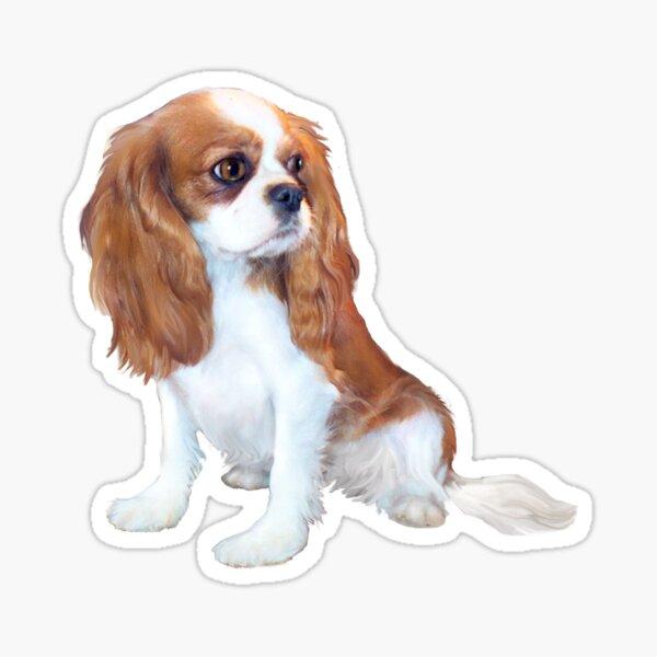Cavalier King Charles Spaniel - Blenheim Puppy Sticker