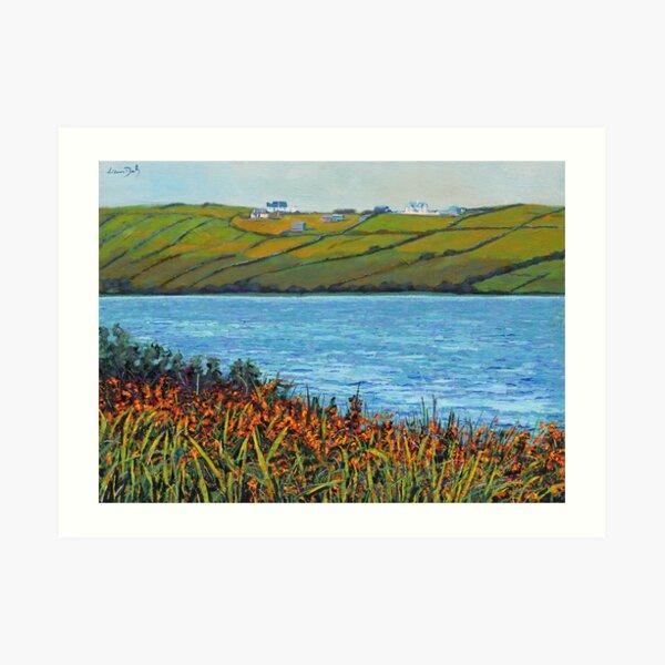 Carrowmore Lake (County Mayo, Ireland) Art Print
