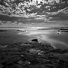 Godfreys Beach, Tasmania by Claire  Farley