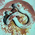 Hooked on Rust by Monnie Ryan