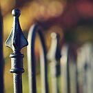 fence by sleepyjeanne
