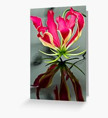 Gloriosa Lilly Greeting Card