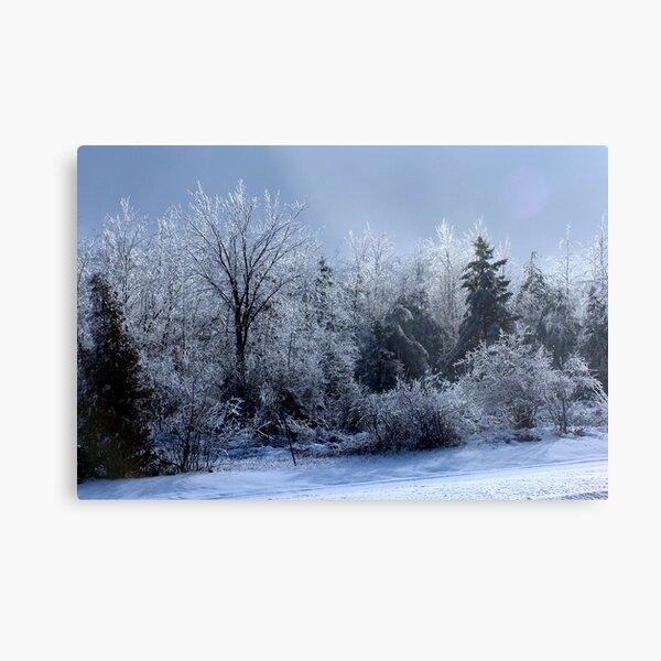 Ice Storm Metal Print
