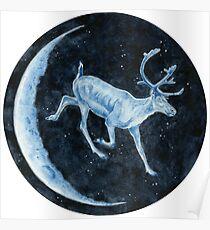 Magical, Glowing Reindeer Poster