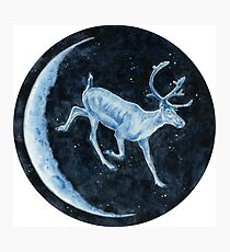 Magical, Glowing Reindeer Photographic Print