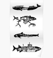 Fish Pattern Poster