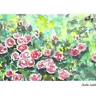 Pink Roses in the Summer Garden by CarolineLembke