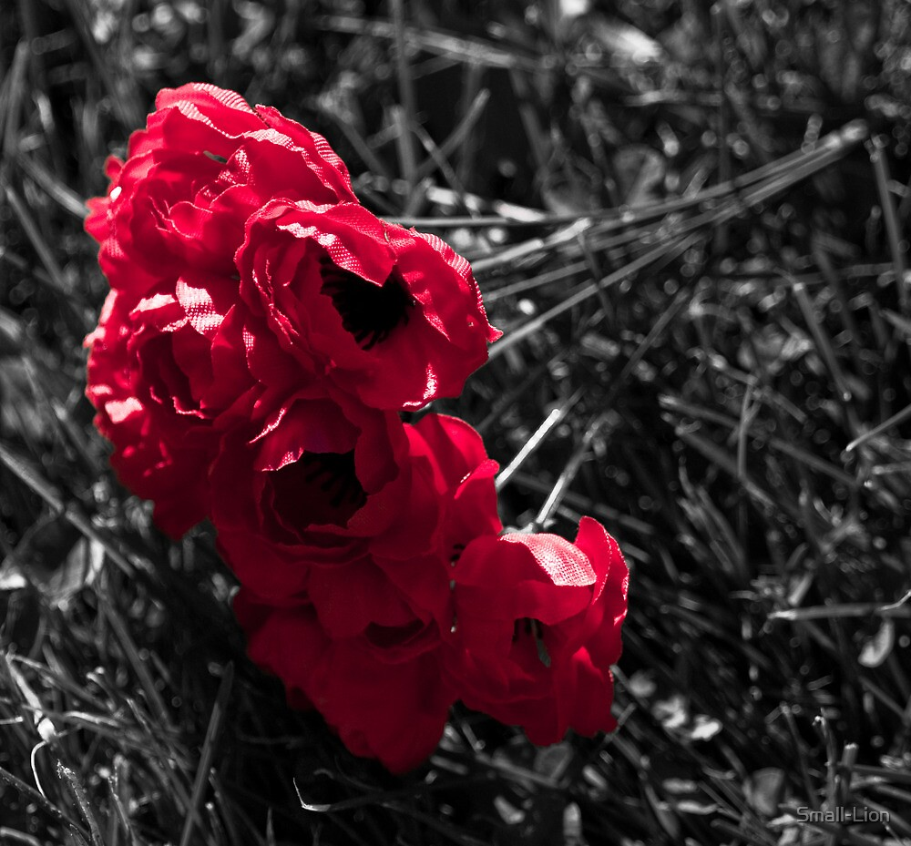 """""""...And in the morning, we will remember them."""" by Small-Lion"""