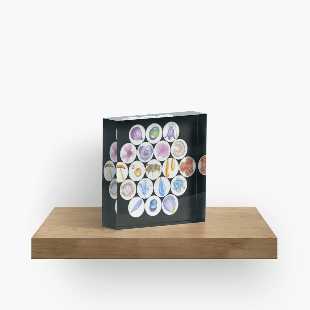 Beefriend Acrylic Block