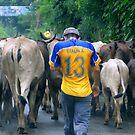 Ecuador Roadblock  by Al Bourassa
