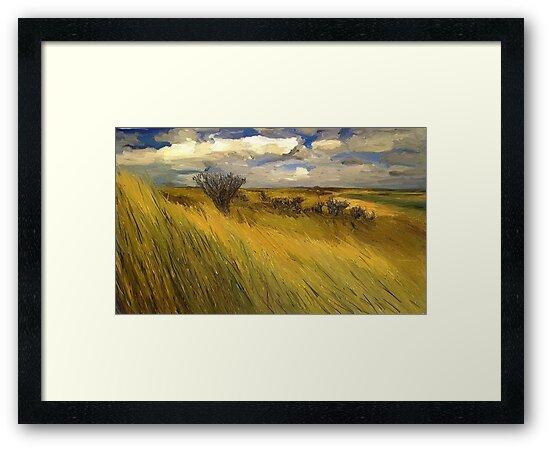 Iowa Prairie Grasses by Randy Sprout