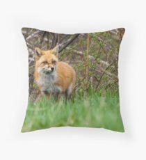 Momma Fox Throw Pillow