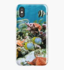 Underwater coral reef with starfish and colorful fish iPhone Case/Skin