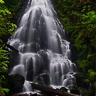 Fairytale Falls, Columbia River Gorge, Oregon by Albert Dickson