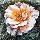 Meine Rose - gezeichnet mit Farbstiften von bubblehex08