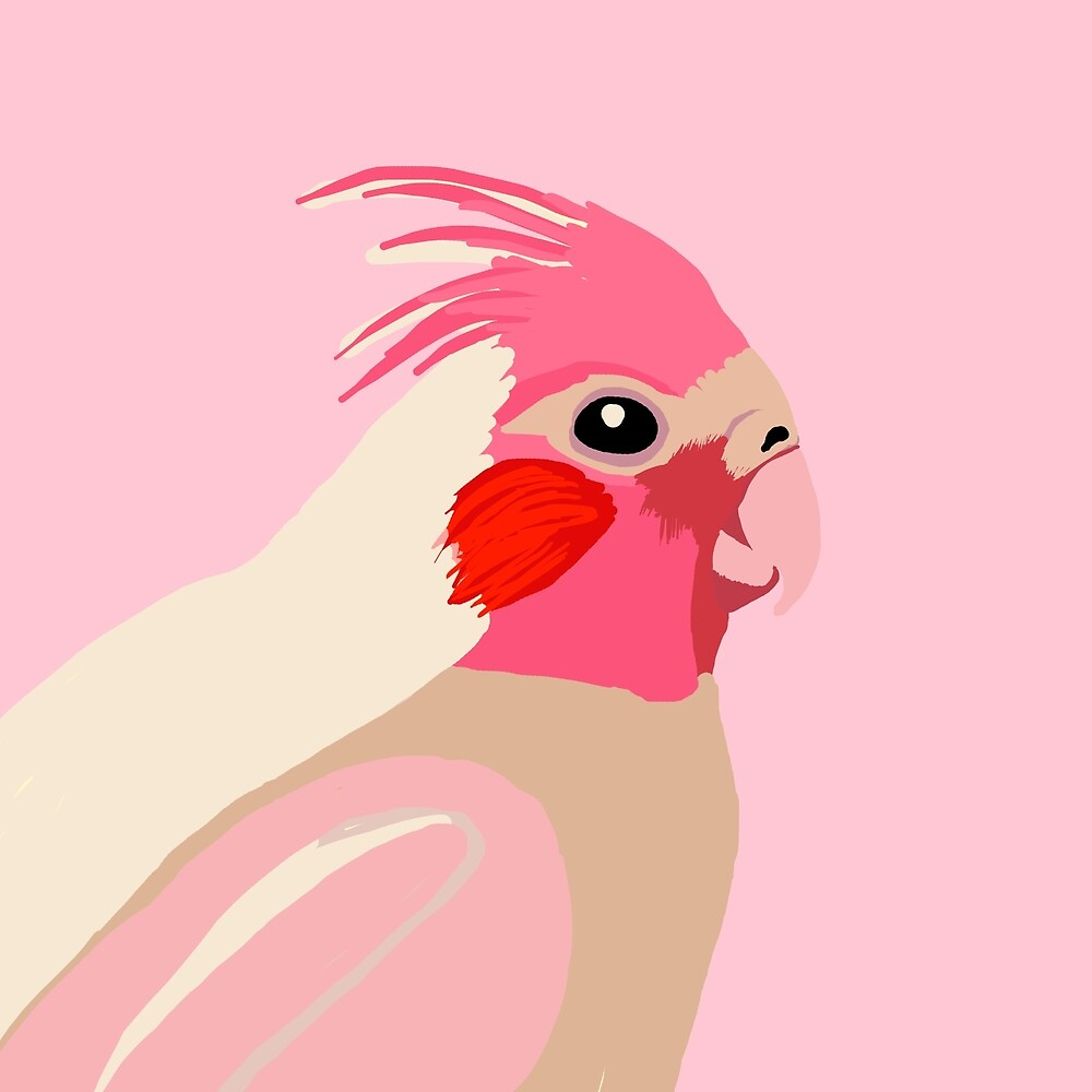 Pink Cockatiel Parrot by Tim Mane