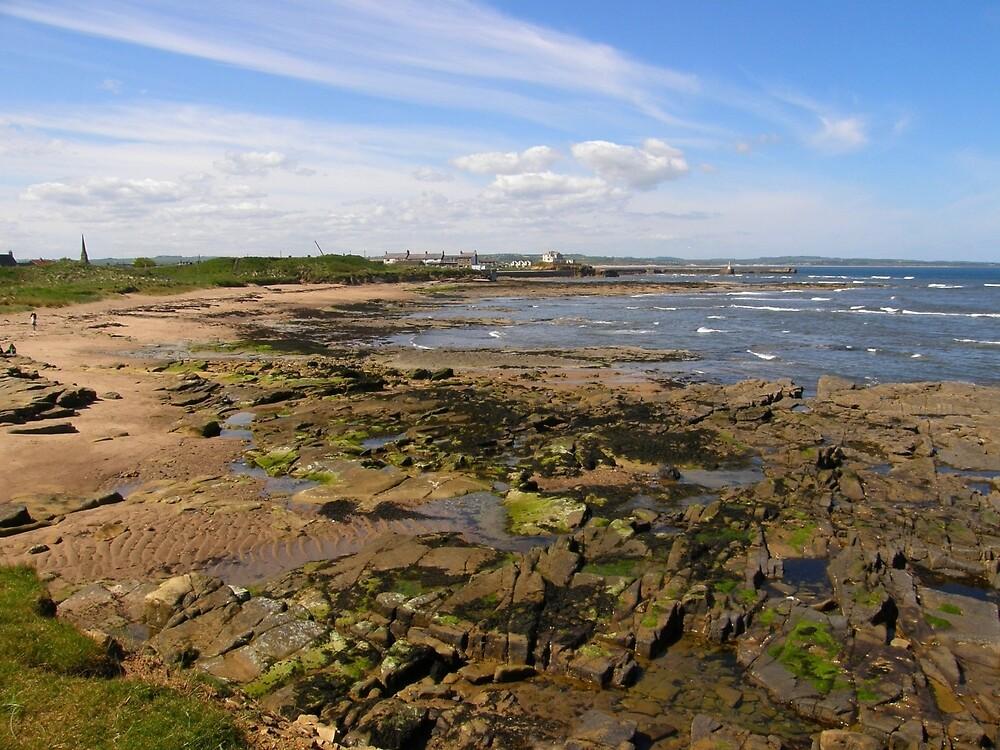 A Northumberland Beach by IngridSonja
