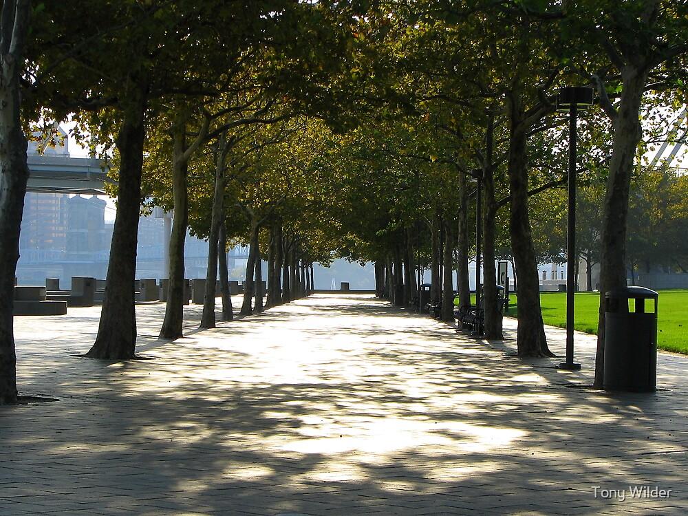 A Walk In The Park - Sawyer Point Cincinnati by Tony Wilder