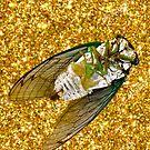 glitter bug by dizzee-b