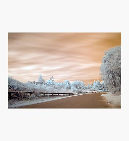 Geyser road in infrared 2 unaltered Photographic Print