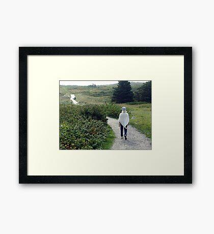 Beach Trails Framed Print