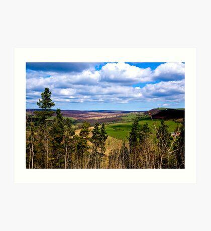 View of Pockley Moor. Art Print