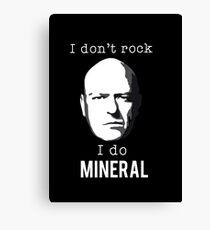 I do mineral Canvas Print