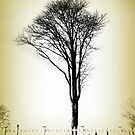 Tombstone Tree by EvePenman