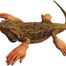 Lizard Hands by Elisecv