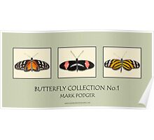 Butterfly Horizontal Collection 1 - Print Poster