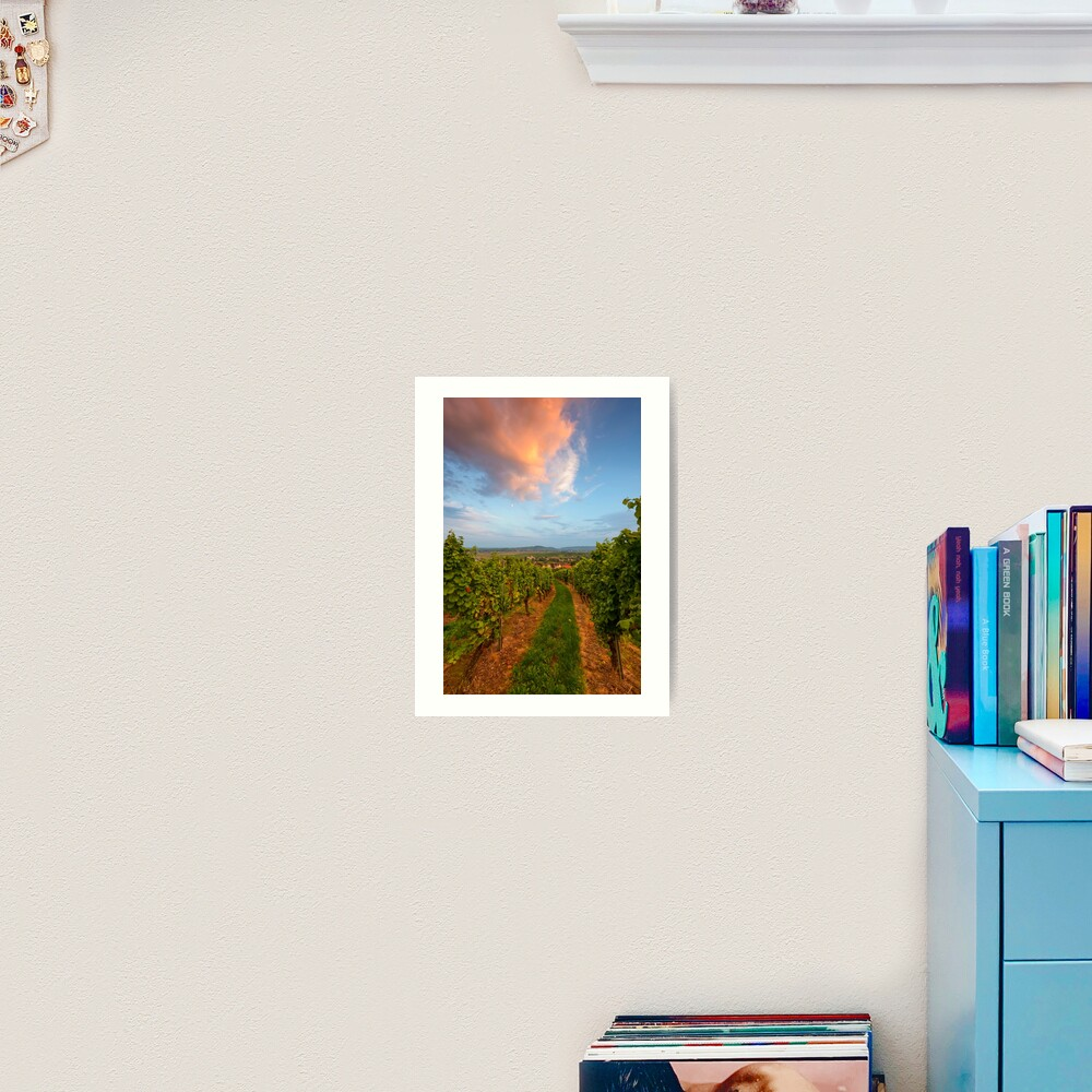 Impression artistique «Dans le vignoble de Wangen»